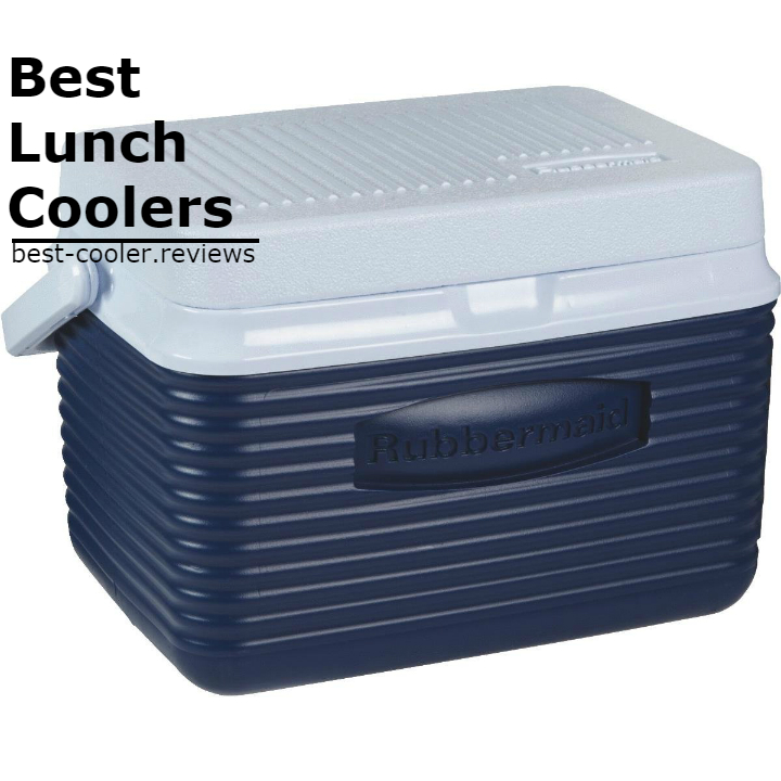 Best Food Coolers On The Market
