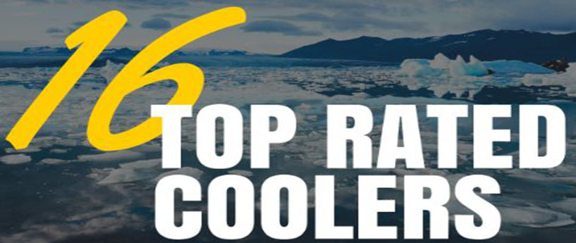 16 Top Rated Coolers