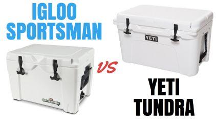 Igloo Sportsman versus Yeti