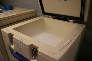 Would it be advisable for you to Use Dry Ice In Your Cooler?