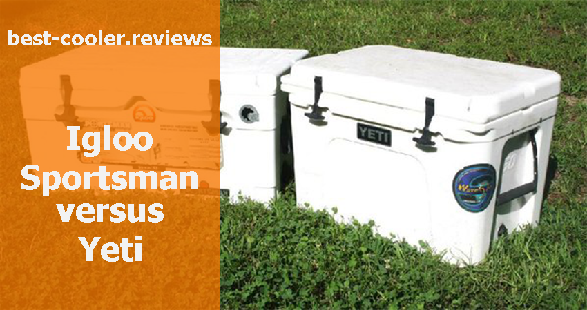 Igloo Sportsman versus Yeti – Which Cooler Is The Best Buy