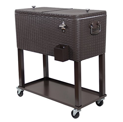 Best Resin Wicker Coolers